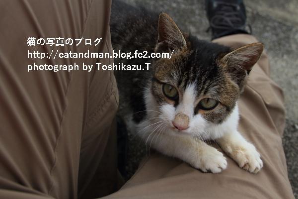 IMG_2683s.jpg
