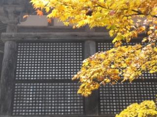 201711shiga0160.jpg