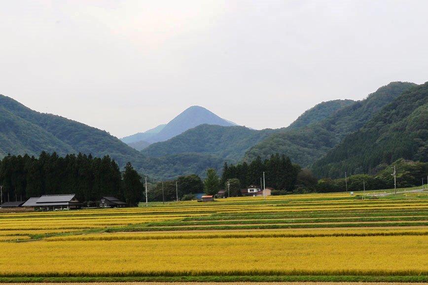 sankaku6491.jpg