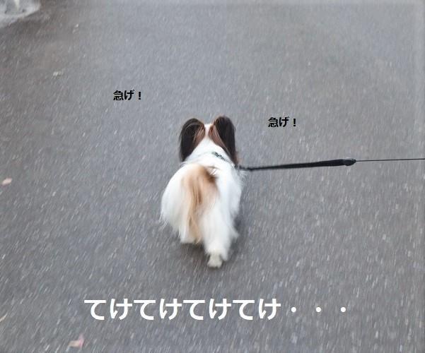 2018100911.jpg
