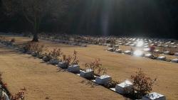 20180103英連保墓地1