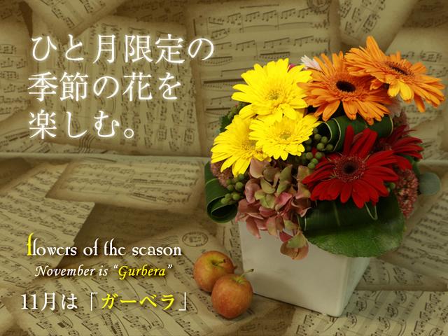ガーベラ 季節の花 アレンジ 人気 秋 誕生日 記念日 配達