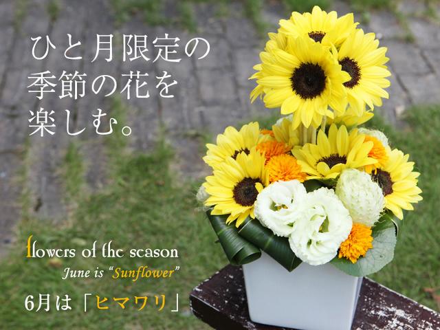 ヒマワリ 夏 贈りもの 人気 花 アレンジ 黄色 元気が出る