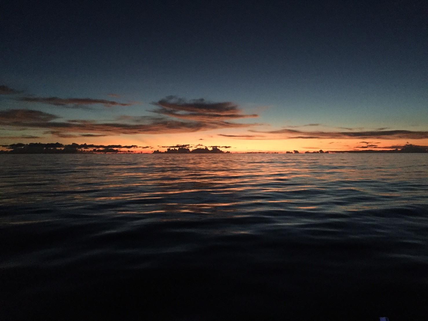 タイ ダイビング シミラン