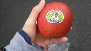 外崎りんご園