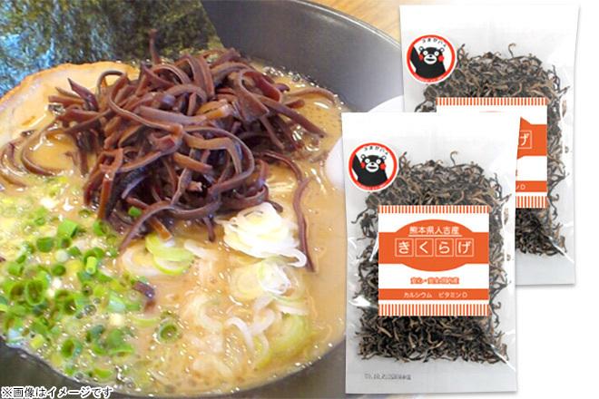 large_170321__kpd051661_________--Gift-from-Kyushu-_.jpg