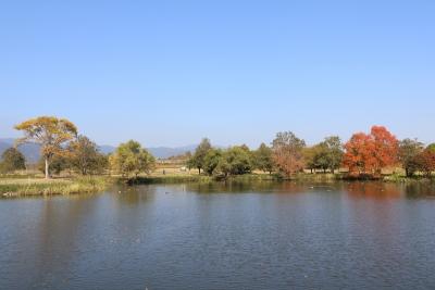 吉野ヶ里公園(3)