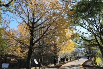 舞鶴公園(1)