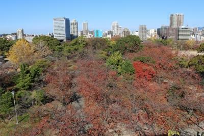 舞鶴公園(3)