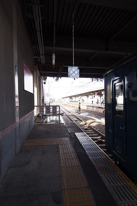 20170618_otori-03.jpg
