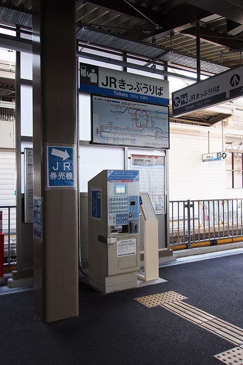 20170806_wakayamashi-06.jpg