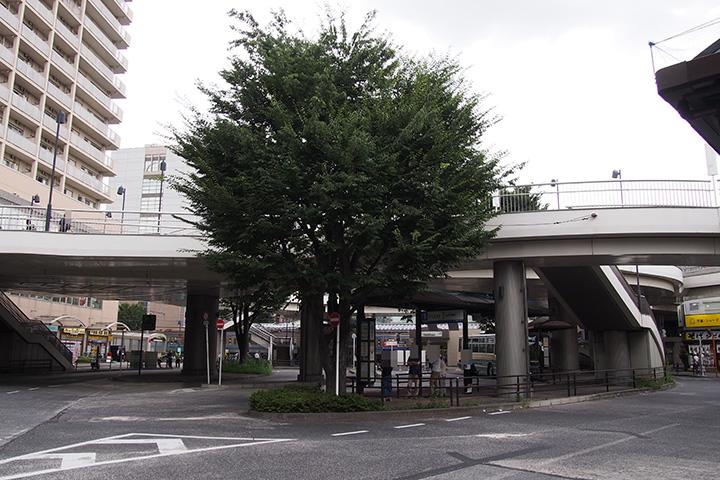 20170827_oizumi_gakuen-01.jpg