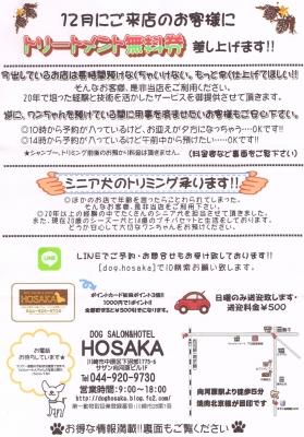 【武蔵小杉・向河原】DOG SALON HOSAKA・WEBチラシ