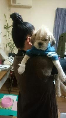 21年生きた犬「ゲン」