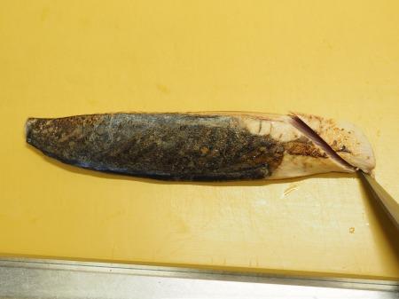 カツオイマイチの刺身060