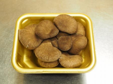 鶏むね肉とヒラタケのすき焼き045