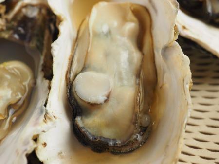 レンジ蒸し牡蠣022