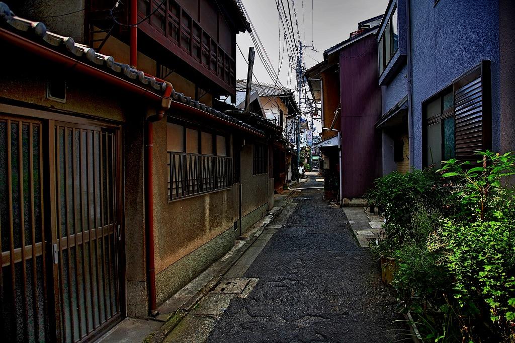 IMG_0522京都