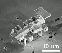 micro F1 car by The University of Texas at Dallas