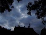ドラゴンみたいな雲