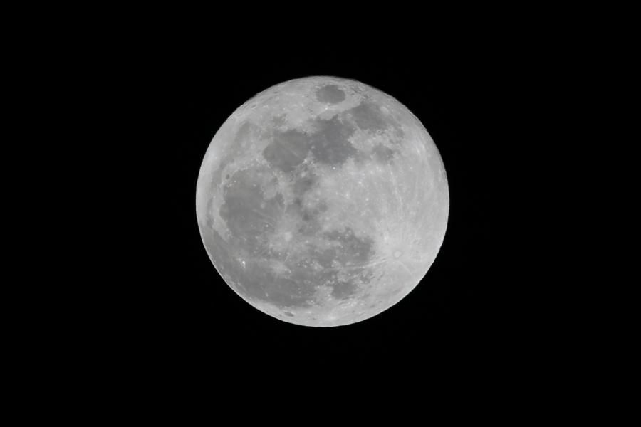 皆既月食-2018年1月31日T84A4804