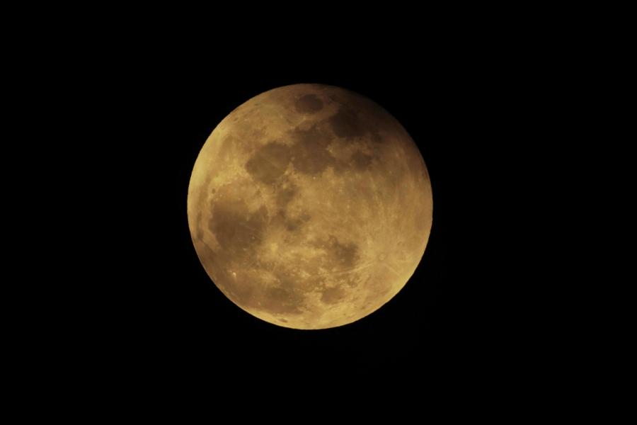 皆既月食-2018年1月31日T84A5001