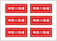 神奈川県産の張り紙テンプレート・フォーマット・雛形