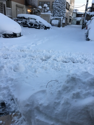 大雪2018 積雪20センチ越え