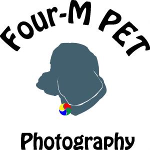 大阪のど真ん中にあるペット撮影スタジオ Four-M PET