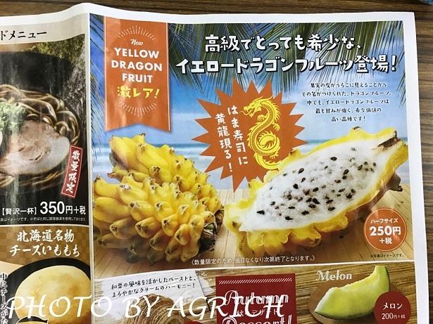yellow sushi1