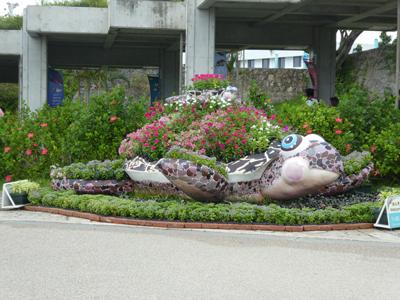 怒涛の沖縄その3 3