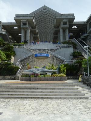 怒涛の沖縄その3 45