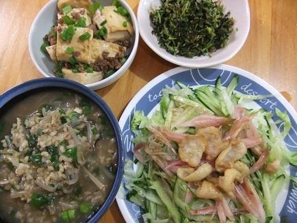 雑炊、サラダ、ミンチ豆腐、浅漬け