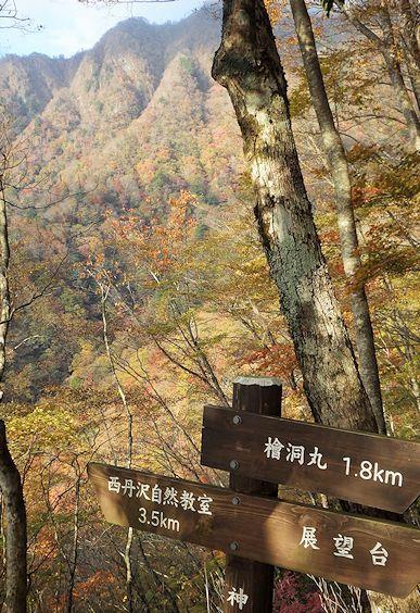 檜洞丸の紅葉3