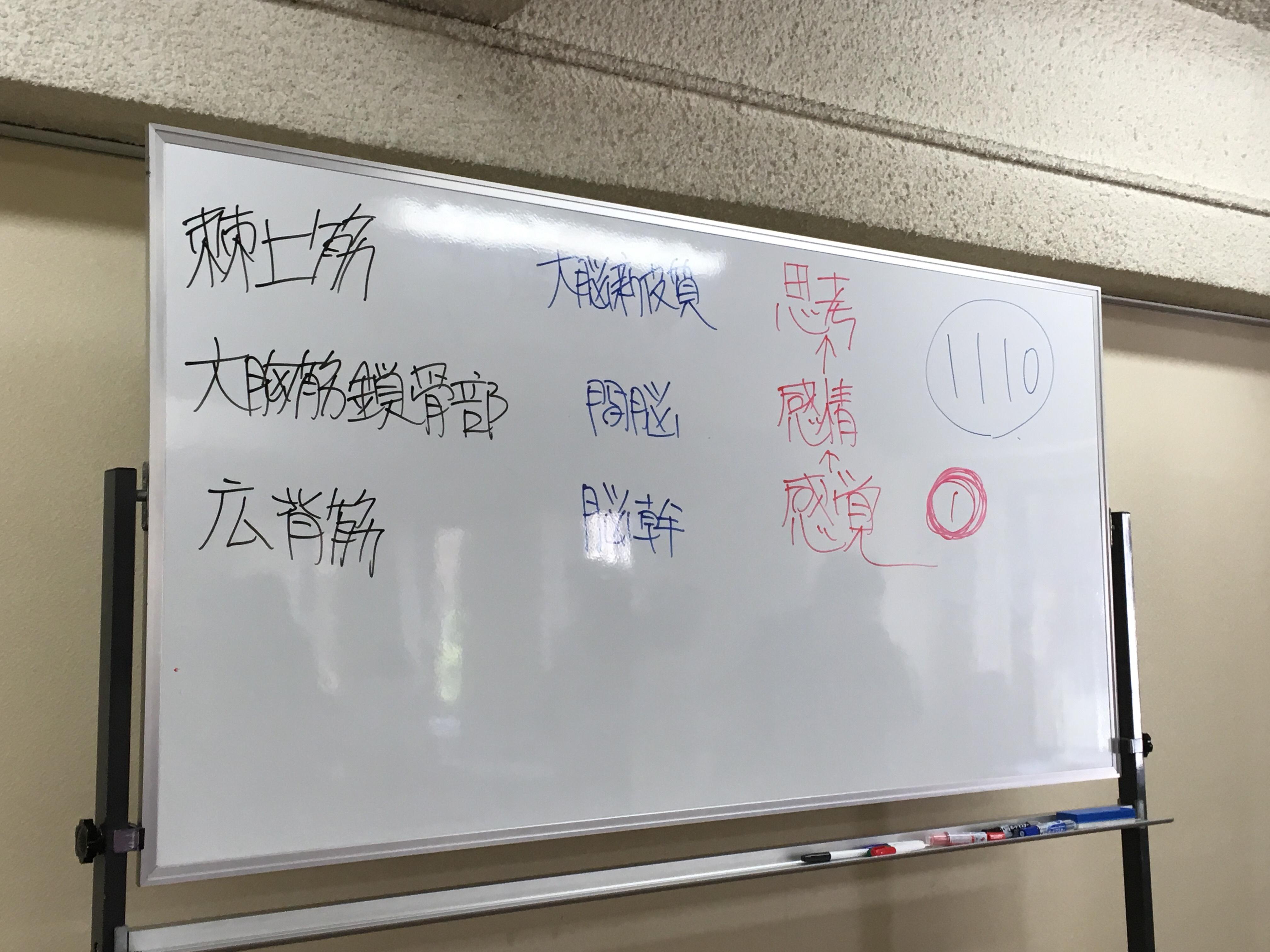 1から始めるキネシオロジー上級編最終日!