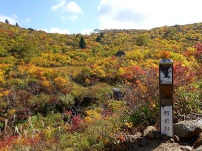 栗駒山 苔花台