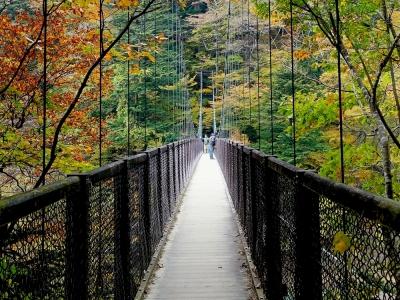 塩原 回顧の吊橋