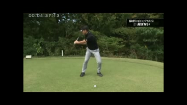 桑田泉DR1