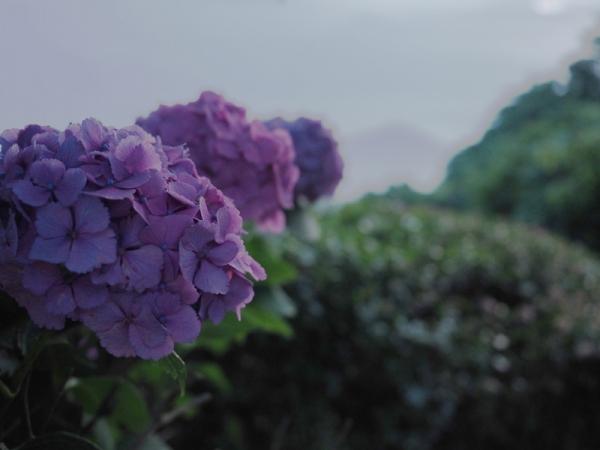 紫雲出山11