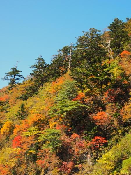 紅葉の山05