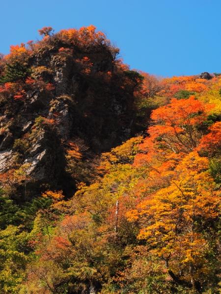 紅葉の山08