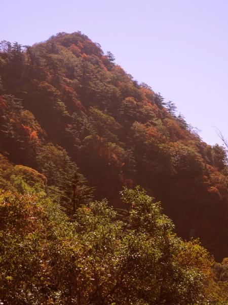 紅葉の山09