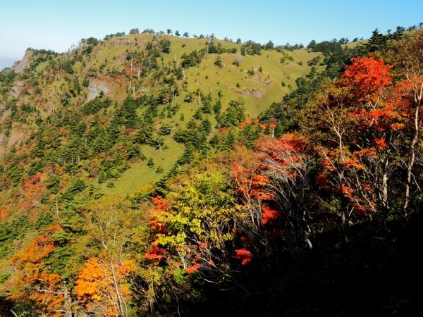 瓶ヶ森の紅葉