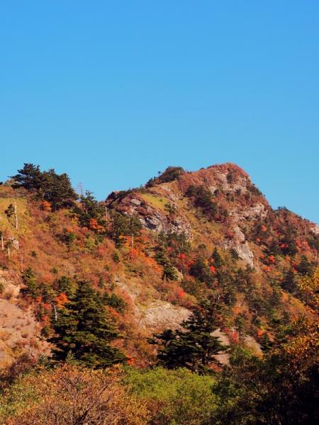 瓶ヶ森東面の紅葉