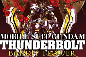 機動戦士ガンダム サンダーボルト RECORD of THUNDERBOLT 2t