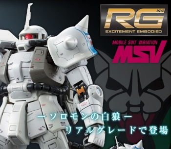 RG MS-06R-1A シン・マツナガ専用ザクII (8)