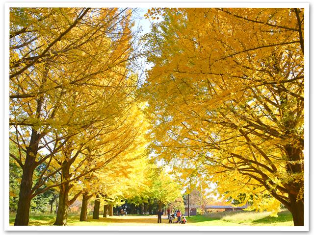 BBQ☆昭和記念公園