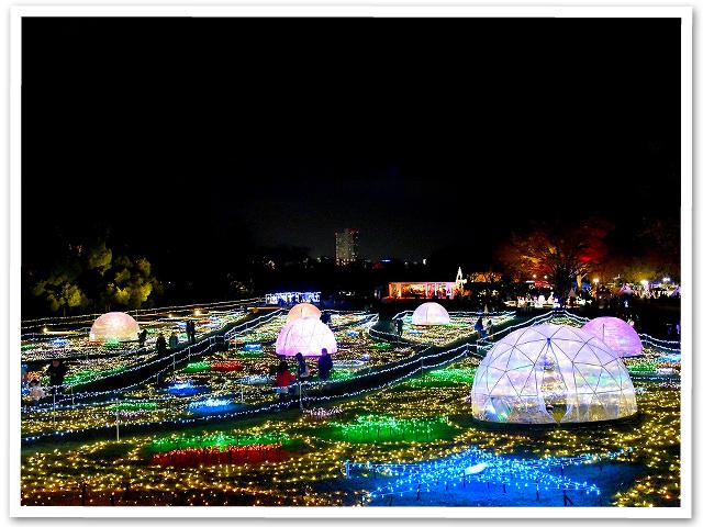 イルミ☆昭和記念公園