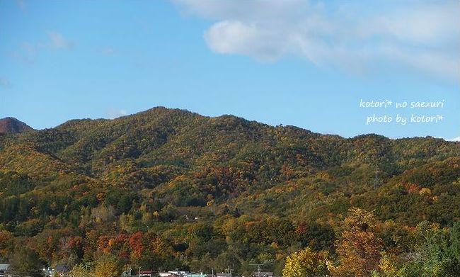 山の紅葉が今一番!