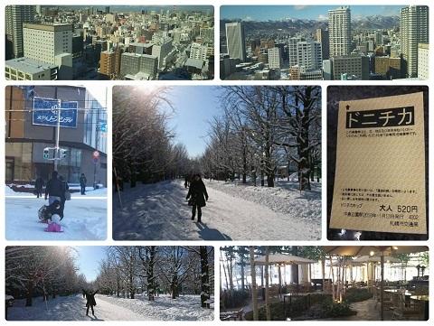 平成30年1月13にち13日中島公園
